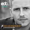 Ilan Bluestone - EDC Las Vegas 2018 Mix 2018-05-08 Artwork
