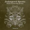 Endangered Species 011 - Sarathy Korwar [28-11-2018]
