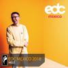 Melé - EDC Mexico 2018 Mix 2018-02-21 Artwork