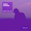 Guest Mix 455 - Dushi Sounds [30-12-2020]