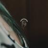 Lushthetics 008 - Guest Mix by Amira [09-03-2020]