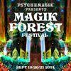 [Download] Mixmaster Morris @ Magik Forest Festival pt1 MP3