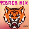 TIGRES DEL NORTE MIX - ARIZ DJ
