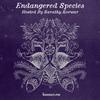 Endangered Species 032 - Sarathy Korwar [26-08-2020]