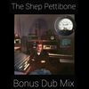 The SHEP PETTIBONE BONUS 2020 DUB MIX