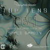 Space Garden - Crystal Clouds Top Tens 264 2017-01-28 Artwork