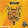 Safari Flava 007 - Guest Mix by ECHOBUZZ [30-01-2021]