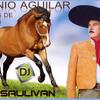 ANTONIO AGUILAR CABALLOS MIX VIP-DJSAULIVAN