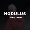 Nodulus x FatKidOnFire mix