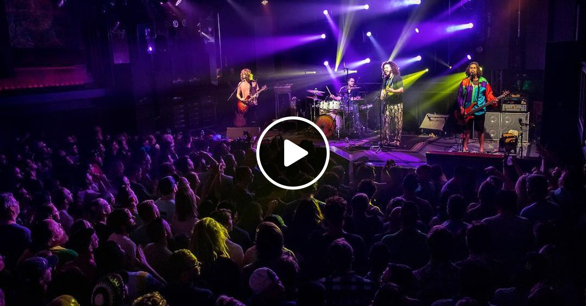 Pigeons Playing Ping Pong Culture Room Fort Lauderdale Fl 2019 2 9 By Cheeseheadproductions Mixcloud
