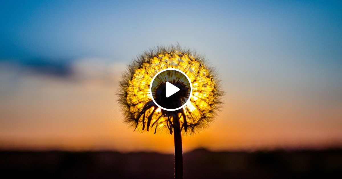 Ambient Music & Space Sound Mix Relaxing | Study Spa Massage