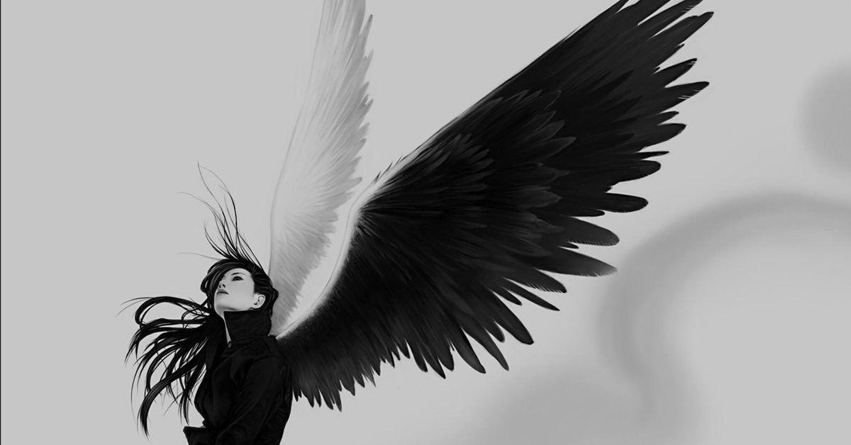 Смешные картинки с крыльями за спиной, открытки открытка