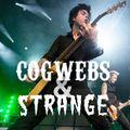 Cogwebs and Strange Episode 262 [aired 9 Sept 2021]