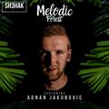 Melodic Forest - Adnan Jakubovic