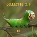 Collectiq 2.0 #7: Kasap