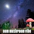 Jazzy Instrumental Hip Hop with a Downtempo Vibe - Aum Mushroom Vibe