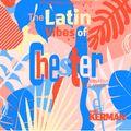 """RadioKerman, The Latin Vibes of Chester """"Alterlatino"""""""