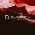 Liquid Room Show   dnbradio.com   30/03/2021