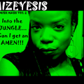 Mizeyesis Pres: Mish Mash Vol2: into the JUNGLE... can I get an AMEN!! (2010)