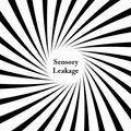 Sensory Leakage - w/ Simon Berkovitch (05.02.21)