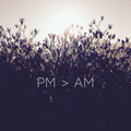 PM > AM