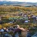 Pure Soil – 4th December 2020