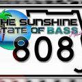Impression - Sunshine State of Bass (Set)