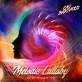 SetMix February - Melodic Lullaby