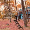 CITAN LIVE MIX -2020 Autumn- Mixed by Eita Godo