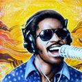 Stevie Wonder (70s) - Tribute