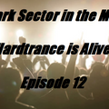 Dark Sector in the Mix - Hardtrance is alive Episode 12