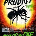 The Prodigy   Live World's On Fire 2011