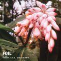 FOIL w/ Cico - 11th April 2019