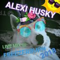 Alexi Husky Live @ Freezerburn 2018, random mixing at the Hookers and Blow stage