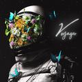 Voyager - Liquid 5