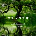 #242 ocelotl ometeotl from Maastricht ,NLD Mar. 7th 2021