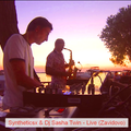 Syntheticsax & Sasha Twin -1 part Live Marina Zavidovo