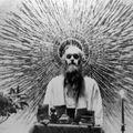 Parson - The Bees Made Honey in Ram Dass' Skull