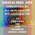 DIGITAL HIGH LIFE 6.7 @datafruits.fm EMB