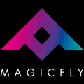 FLY DISCO STORY