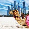 Arabic Music Mix 'Djchok