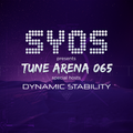 SYOS pres. Tune Arena with Dynamic Stability @ Vibe FM Romania [8.May.2014]