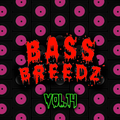 Bass Breedz Vol.14 (Drum and Bass)