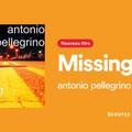 Missing you antonio  pellegrino dj