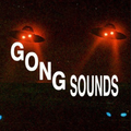 Gong Sounds w/ Prmtvo - 2nd April 2018