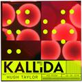 Hugh Taylor @ KALLIDA 2018