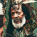 Dub Kali Rootz: Soulfull Roots , Rebellious Branches and Conscious Leaves