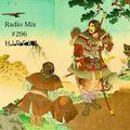Radio Mix #296