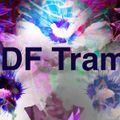 "DF Tram- ""FLOWERS IN BLOOM"""