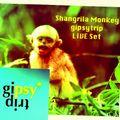 Shangrila Monkey - gipsy LIVE set